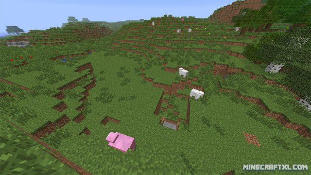 Pink-Sheep-Seed