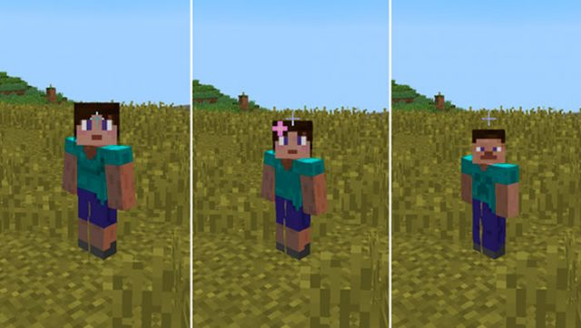 Gender Mod for Minecraft