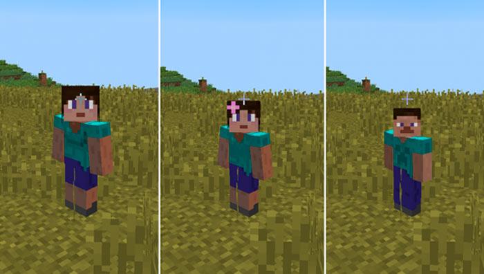 Gender Mod for Minecraft 1 8 x - 1 8 8 | Minecraft Mods
