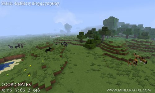 Minecraft 1.6.2 Horse Seed
